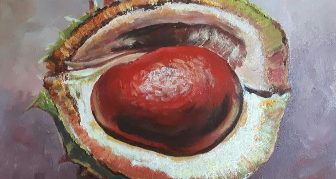 stilleven avocado